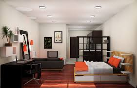 awesome small apartment couch contemporary home design ideas