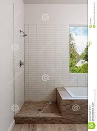 shower and bath combo u2013 homeagainblog com