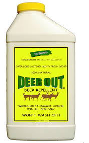 How To Keep Deer Out Of Vegetable Garden by Amazon Com Deer Out 32oz Concentrate Deer Repellent Rodent
