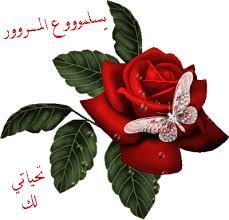 مدوتة نهضة مصر التعليمية Images?q=tbn:ANd9GcTQLGiAPZBD7Xd68Ioh3xvRUsQaT2UzAjITLG3djrJ1k0LQoaVDSA