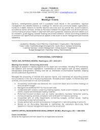 Manager Audit Resume   Curriculum Vitae   Europass Template   Resume   Service
