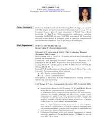 general resume summary examples examples of professional summary for resume resume templates job resume summary examplesregularmidwesterners resume and templates