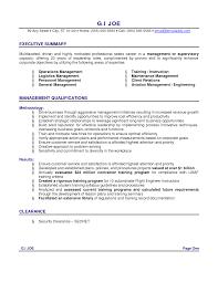 c level resume samples     Executive Resume Summary Examples Executive Summary Example ariananovin co Executive Summary Accounting Resume within Resume Executive