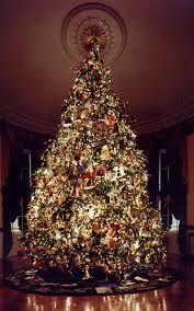 Diy Mini Christmas Trees Pinterest Top 25 Best Real Xmas Trees Ideas On Pinterest Xmas Trees