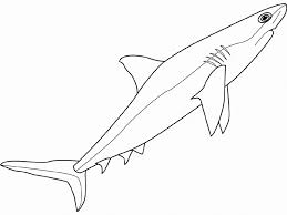 shark coloring pages sea animals animal coloring pages of