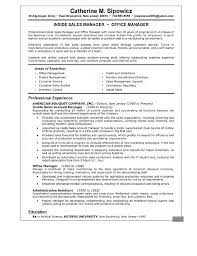 Resume Examples For Sales Resume   Sales   Sales   Lewesmr Mr  Resume Resume Exles Sales Helporg Sle For