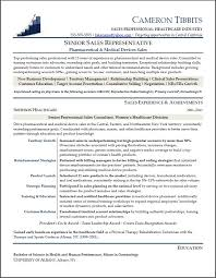 Professional resume sales associate aploon sales associate resume template