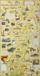 Map Florida Gulf Coast by 61 Best Map Art Images On Pinterest Map Art Cartography And