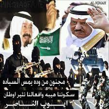 فخر سلاح الجو السعودي Images?q=tbn:ANd9GcTS0iQZ6N8s3Abx8o06MguDI_slj2yXXOBvwGz3WtUDDTv-MsxGxQ