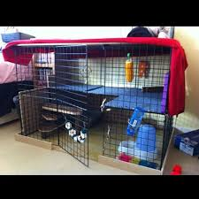 52 best large indoor rabbit hutch images on pinterest