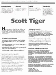 More Beautiful Resume Ideas That Work   JobMob Scott Tiger beautiful resume