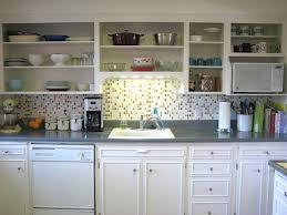 Shelf Kitchen Cabinet Kitchen Cabinet Goodwill Replacing Kitchen Cabinet Doors