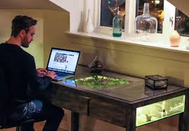 Office Desk Plants by 28 Plants For Work Desk Office Desk Plants Related Keywords