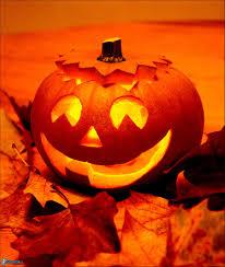 link halloween halloween pumpkin
