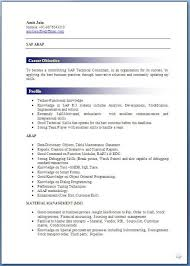 Profile Format  examples of resumes   sample resume profile