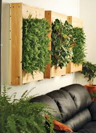 indoor living wall planters the green head trends with outdoor