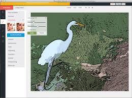 the 9 best browser based photo editors available today