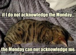 Rabid Reader: It's Monday!