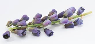 Floral Arrangement Supplies by Dark Blue Bell Flower Stem Artificial Silk Wedding Bouquet