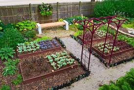 Vertical Garden Vegetables by Outdoor And Patio Small Backyard Vegetable Garden Ideas Combined