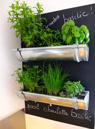 25 ways to start an indoor herb garden brit co