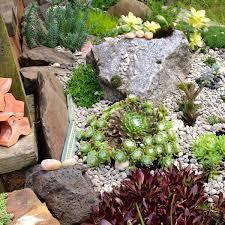 Small Rock Garden Pictures by Lawn U0026 Garden Small Plants In Small Backyard Rock Garden Design