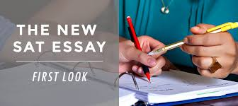 Tips to Help Your Student Improve Their SAT Essay   Student Tutor Blog FC