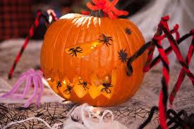 fall festival 2016 embraced seasonal spirit ronald reagan