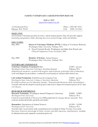 Scholarship Resume Examples by 95 Sample Resume About Computer Skills Sample Resume With