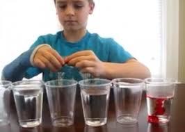 Science fair steps LearnCreateLove