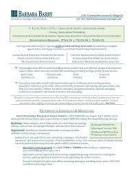 Professional Resume Writing Service  executive resume writing