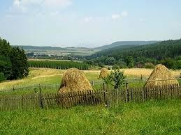 Oblast Džbán, ZARS - chaty-chalupy-dovolená-ubytování