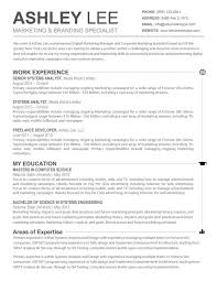 How To Make Resume For Job Resume Resume Overview Examples Online Stylish Writing Teacher