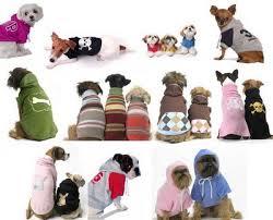 Site de roupas importadas para cães