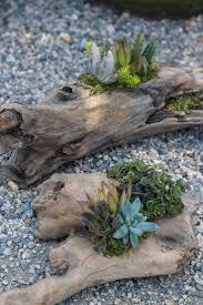 best driftwood garden ideas 85 for modern home design with