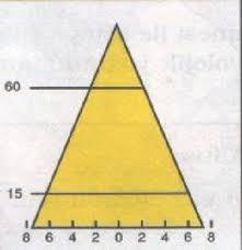 Nüfus piramitleri ve özellikleri