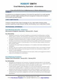 Ecommerce Resume Sample by Email Marketing Specialist Resume Samples Qwikresume