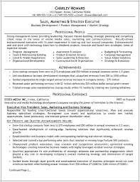 Resume Examples  Manager Resume Objective Examples with Vice     Rufoot Resumes  Esay  and Templates