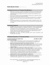Summary Sample Resume by Examples Of Resumes Example Resume Sample For Civil Engineer