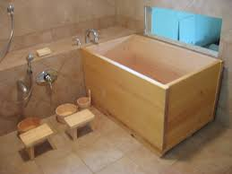 Design My Bathroom Online by 5x7 Bathroom Layout Ideas About Small On Designs With Walk In