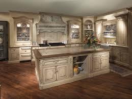 Japanese Kitchen Design Kitchen Kitchen Decor Themes Ideas Image Of Fun Kitchen Decor