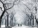 cornell snow