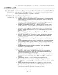 Business Synopsis Template  small business owner resume samples