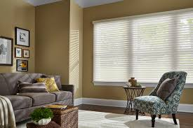 Free Shipping Home Decorators Code Home Decorators Collection Sheer Shades Shades The Home Depot