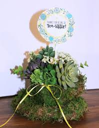 Diy Succulents How To Make An Easy And Unique Tea Cup Succulent Planter Knock
