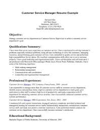 Professional Customer Service Resume  resume template customer