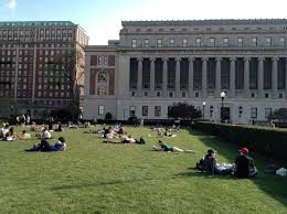 Buy literary analysis papers argumentative essay about effects of     Roosevelt University Blogs