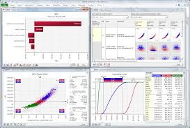 RISK  Risk Analysis Software using Monte Carlo Simulation for