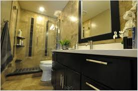 Bathrooms Remodel Ideas 100 Bathroom Remodeling Ideas Small Bathrooms Gorgeous