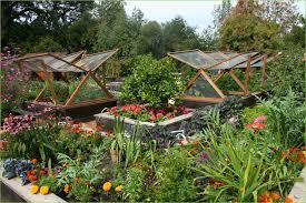 indoor vegetable gardening home ideas blog